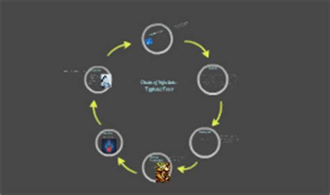 Chain of Infection : Typhoid Fever by Catherine Ruiz on Prezi